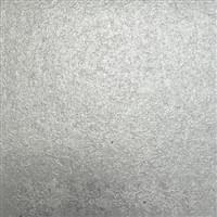Silver 076